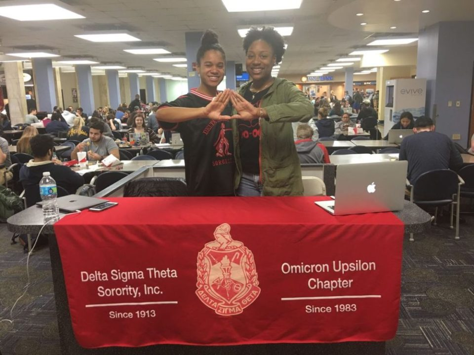 Delta Sigma Theta gives back to the community with Women's Worth Drive