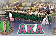 ALPHA BETA CHAPTER OF ALPHA KAPPA ALPHA, FVSU SPRING PROBATE 2017