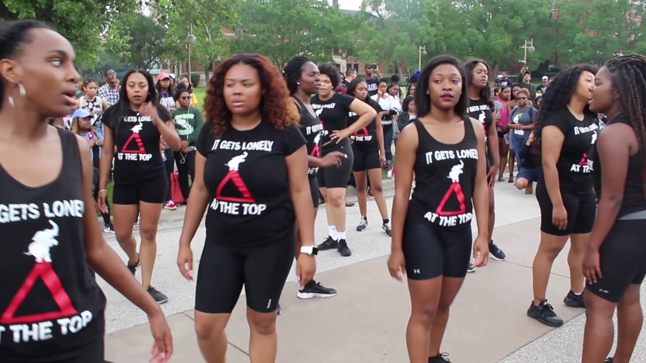 Delta Sigma Theta Eta Beta Yard Show 2017 D9 Greek Tv