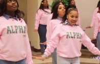 Alpha Kappa Alpha Beta Psi Chapter Yard Show