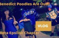 Benedict College SGRho SPR17 Probate | Beta Epsilon | Vlog
