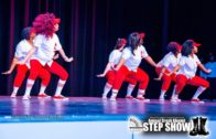 Delta Sigma Theta NPHC of Cobb County 2020 Alumni Step Show