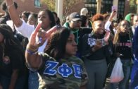 Zeta Phi Beta Sorority, Inc. | Gamma Alpha | Choppa Style