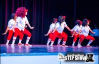 NPHC of Cobb County 2020 Alumni Step Show: Delta Sigma Theta Sorority, Inc. Performance